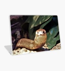 The Monocled Cobra Laptop Skin