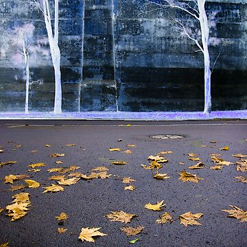 Fall Wall  by harryn