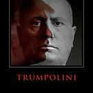 TRUMPOLINI by Alex Preiss