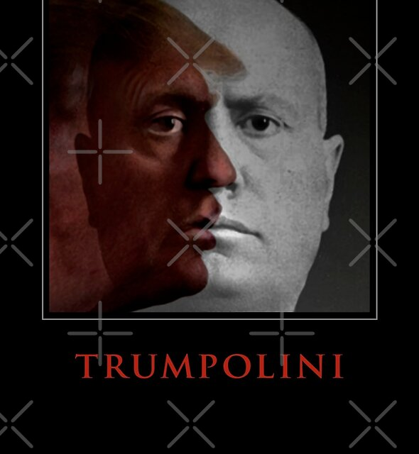 TRUMPOLINI by Alex Preiss