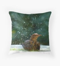 I Like To Stay In Tip-Top Condition - Blackbird Bathing - NZ Throw Pillow