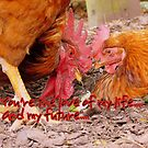You're The Love Of My Life..And My Future.. - Chickens - NZ by AndreaEL