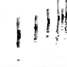 The Moorings by RVogler