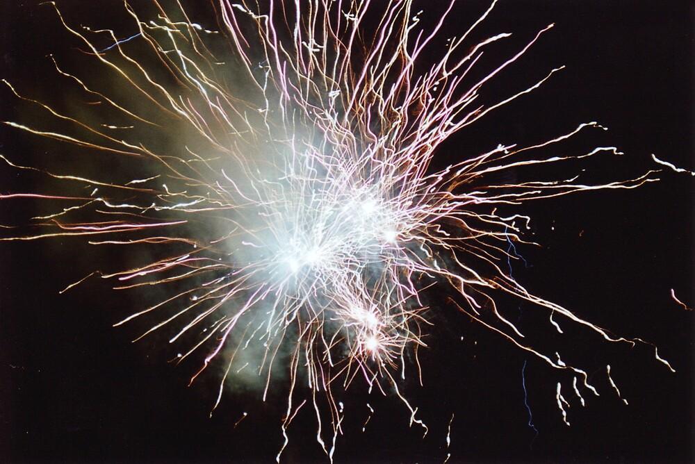 Fireworks - Perth Royal Show by sami15