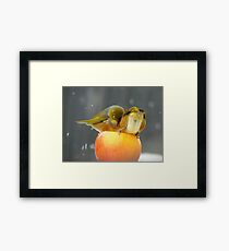 Alright...Alright... Come On Shove Over!!! - Silver-Eyes - NZ Framed Print