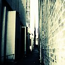 Sydney Alley by Vee T
