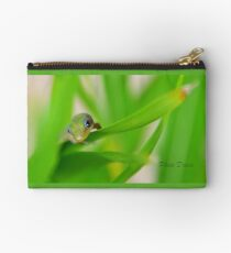 Curious Baby Gecko Studio Pouch