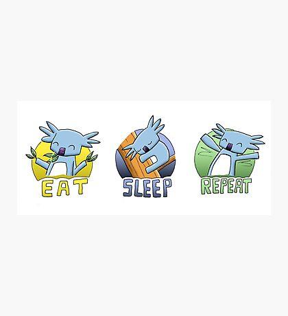 Cute Koala - Eat Sleep Repeat Photographic Print