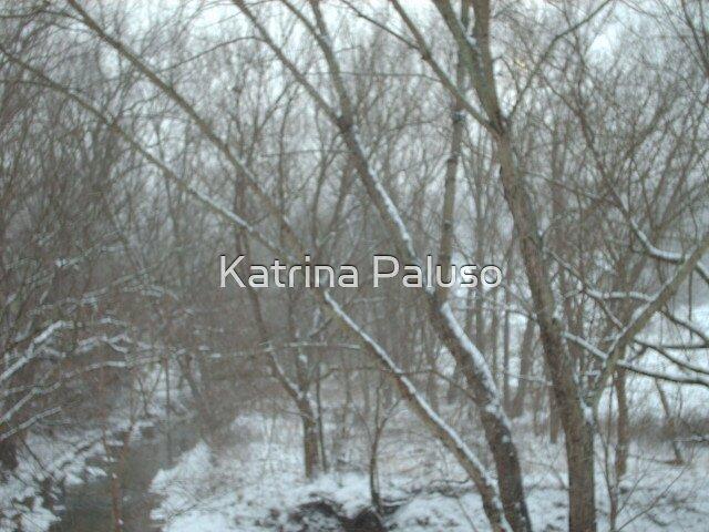 Dead of Winter by Katrina Paluso