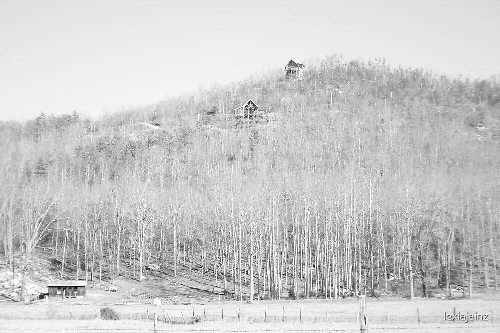 Rustic Mountain Home by lexiajainz