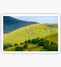 grassy hillside on mountain in summer Sticker