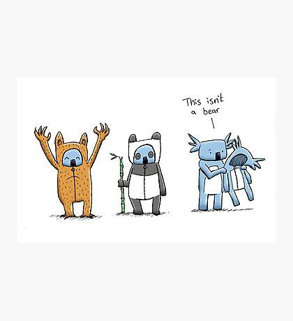 Koala Is Not A Bear Photographic Print