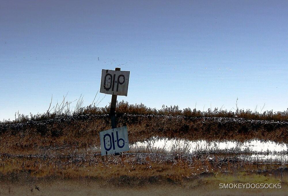 DIP OR 910 by SMOKEYDOGSOCKS