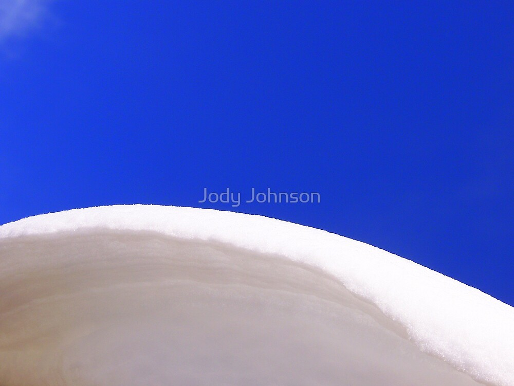 On the Edge by Jody Johnson