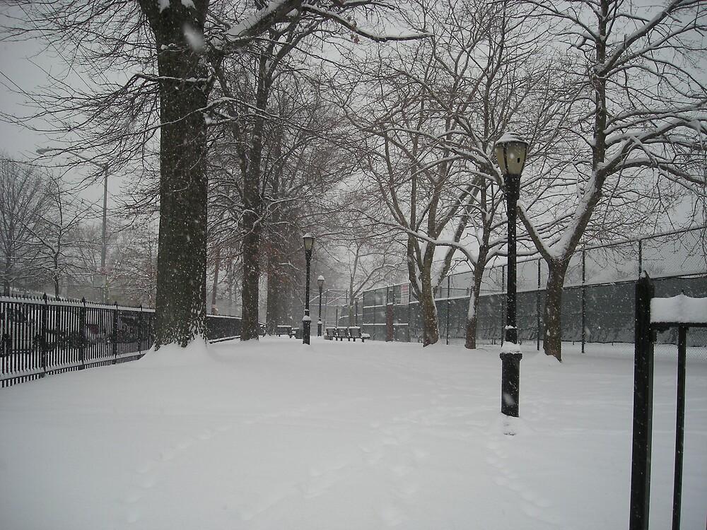 Brooklyn Snowstorm by Diget6255
