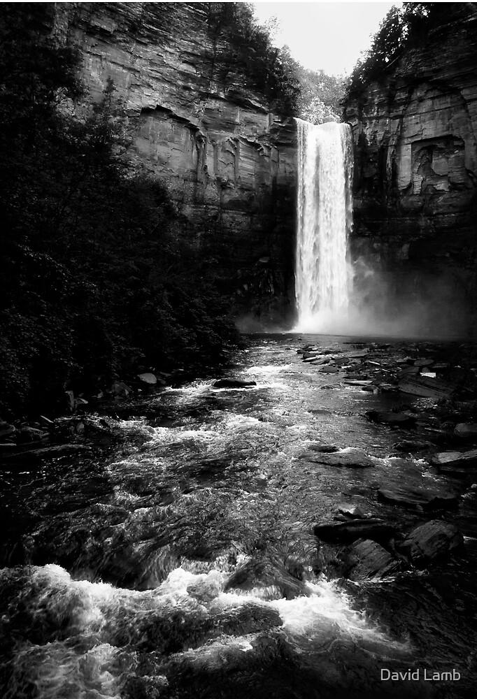 Dark Fall by David Lamb