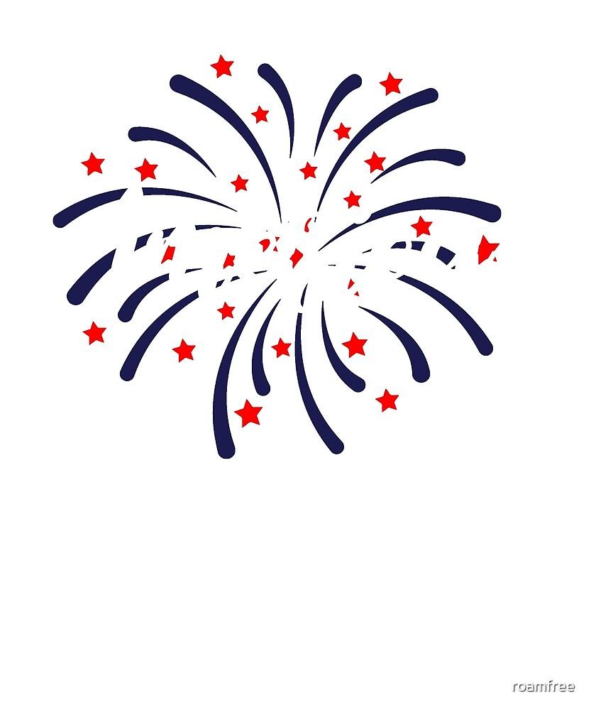 Fireworks by roamfree