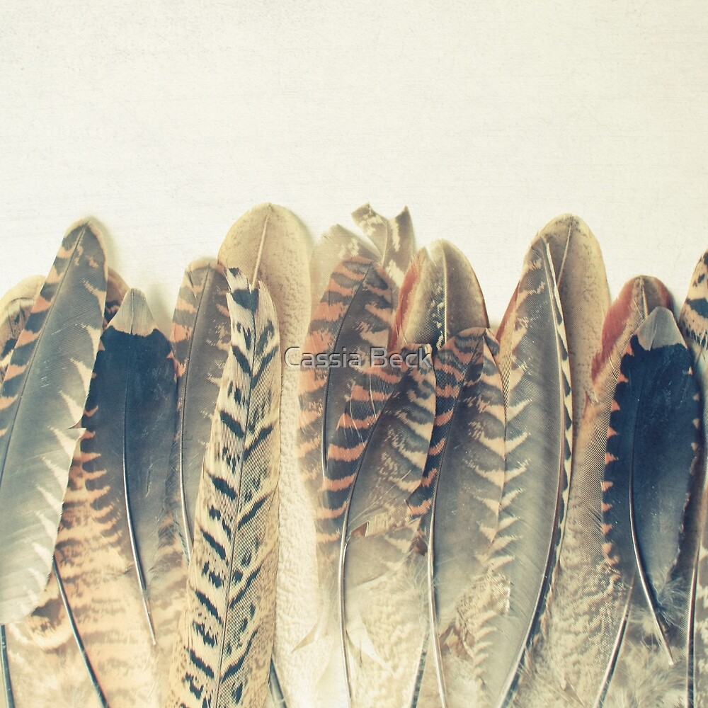Feather Dip by Cassia Beck