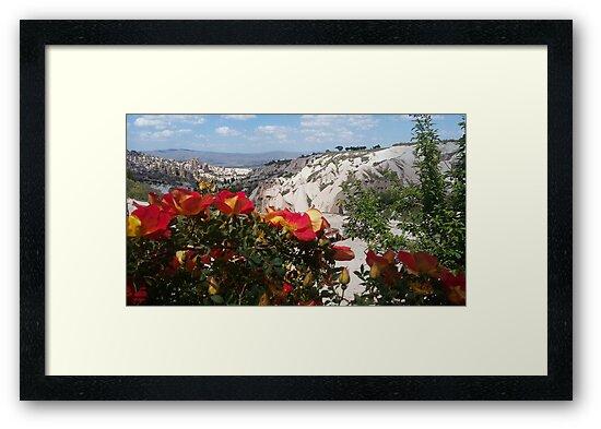 Cappadocia by ProBEST