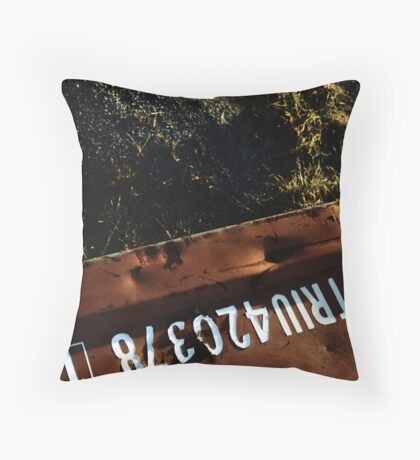 container Throw Pillow