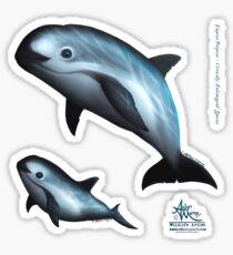 Treacherous Waters - Vaquita Porpoise (Critically Endangered Species) Art, Original Digital Painting by Amber Marine, © 2015 Sticker
