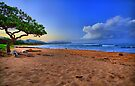 Nukolii Beach by DJ Florek