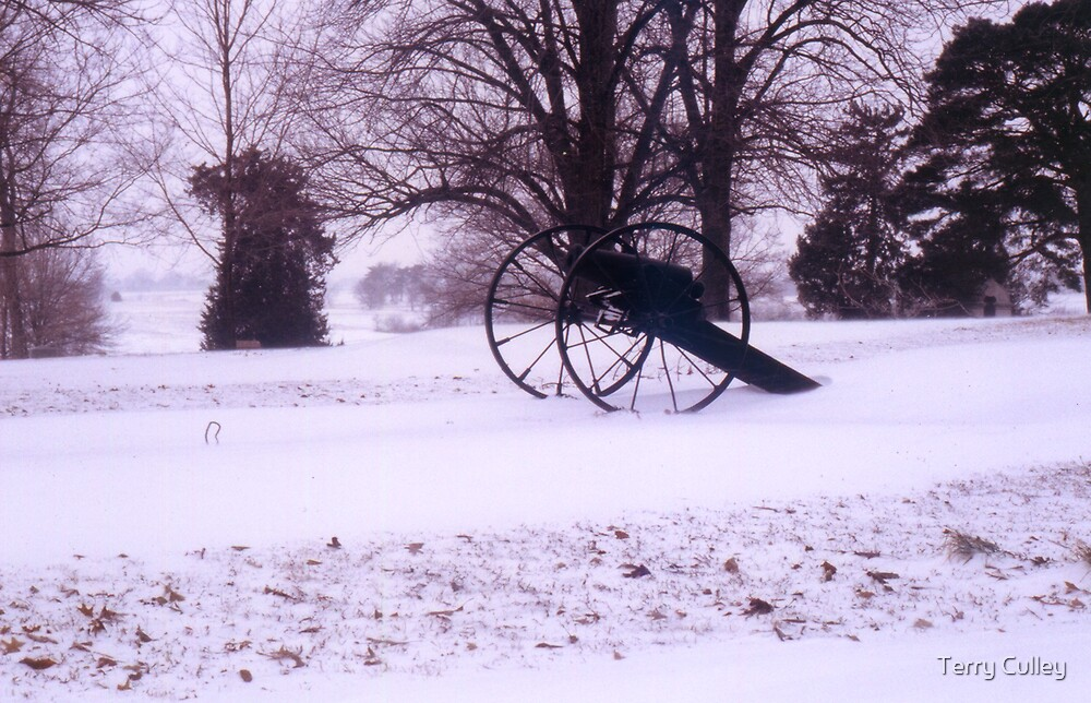 Civil War Winter by Terry Culley