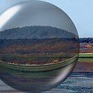 Moon Bubble by Pat Moore