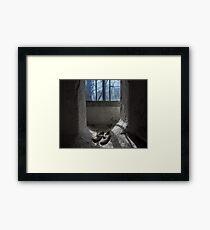 Allegory Framed Print