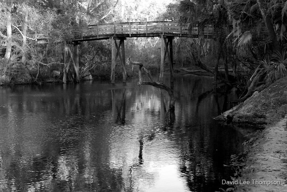 """Bridge on the Hillsborough River. by David Lee Thompson"