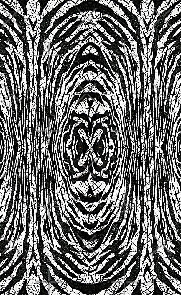 Zebra abstract background by Astralia