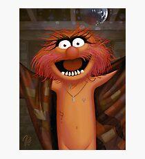 Muppet Maniacs - Animal as Buffalo Bill Photographic Print