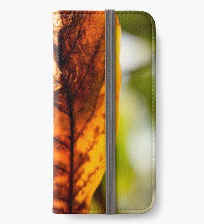 Herbstblatt iPhone Flip-Case