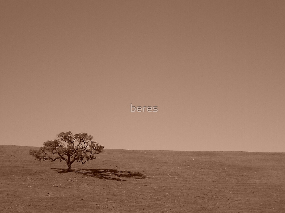 one tree by beres