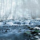 Winter Falls  Brighton NY USA by Frank Kapusta