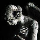 weeping angel by jarrodb