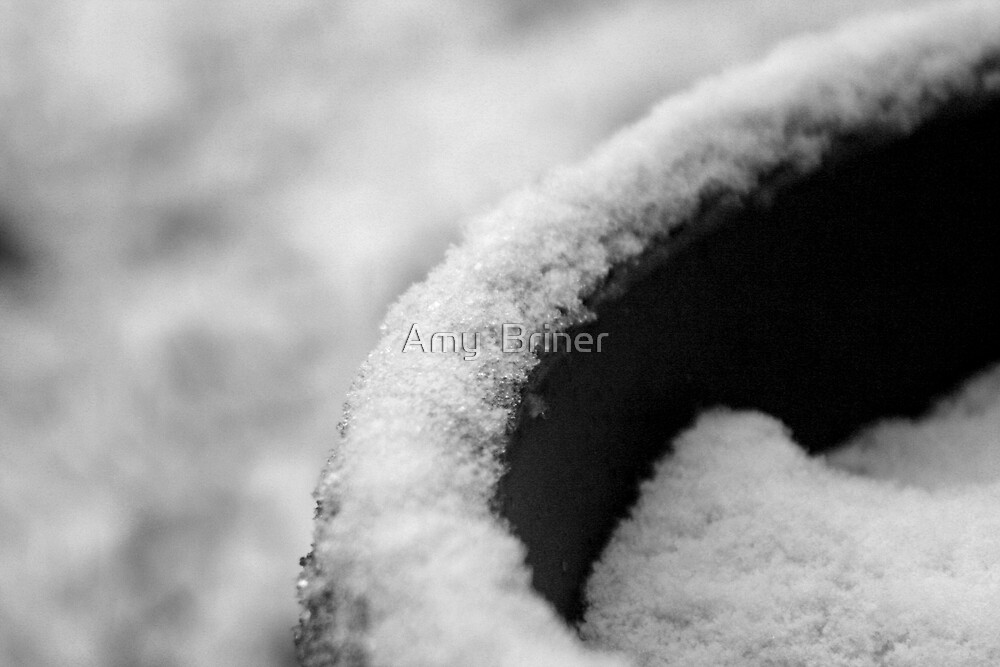 curves by Amy  Briner