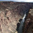 Rio Grande River by Nancy Richard