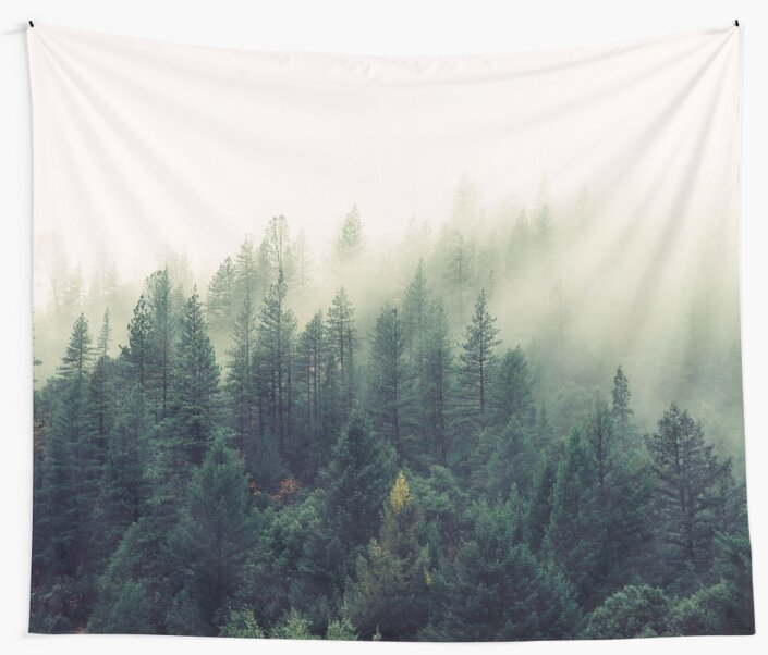 MINDS IN NATURE MODERN PRINTING 1PC #26607444 by happyhouzz