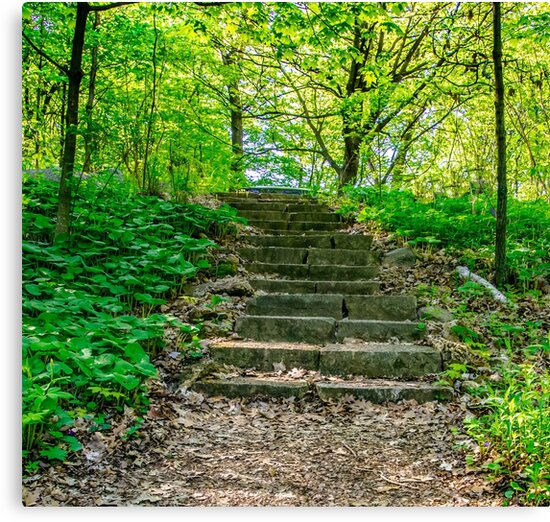 Stairs To The Top by Tina Hailey
