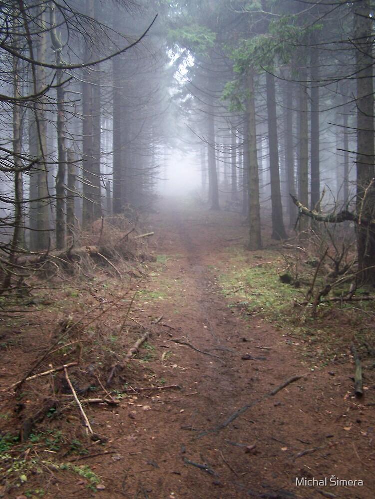 fog by Michal Šimera