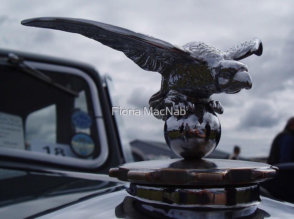 Emblem by Fiona MacNab