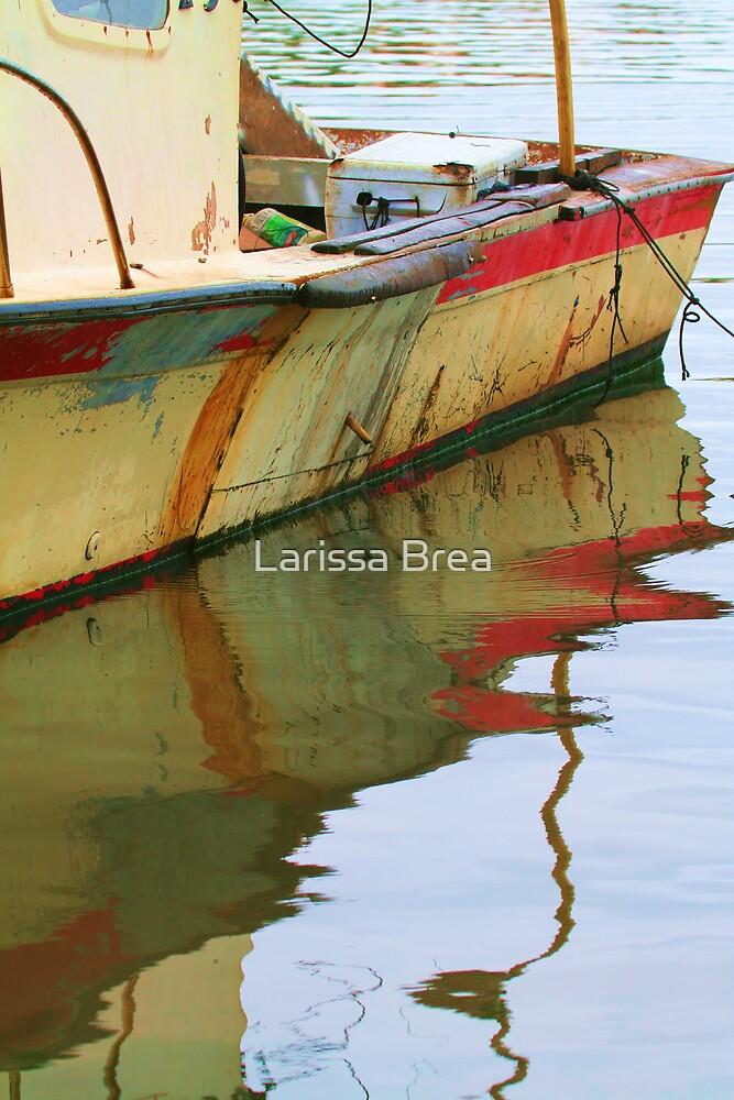 Abandoned Boat by Larissa Brea