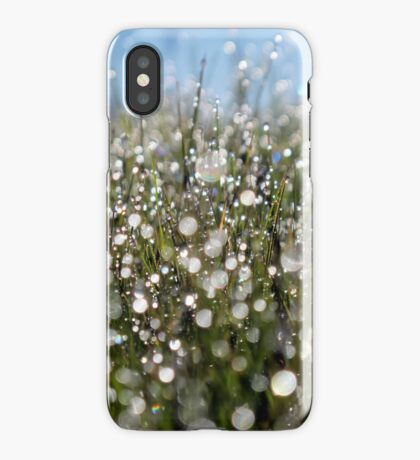 Winter Magic iPhone Case/Skin