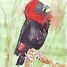 The Red Bishop 2 by Maree Clarkson