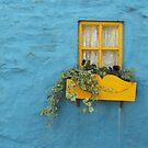 Kinsale Window by Alice McMahon