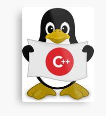 Delphi Linux  C++ Metal Print