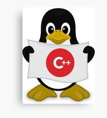 Delphi Linux  C++ Canvas Print