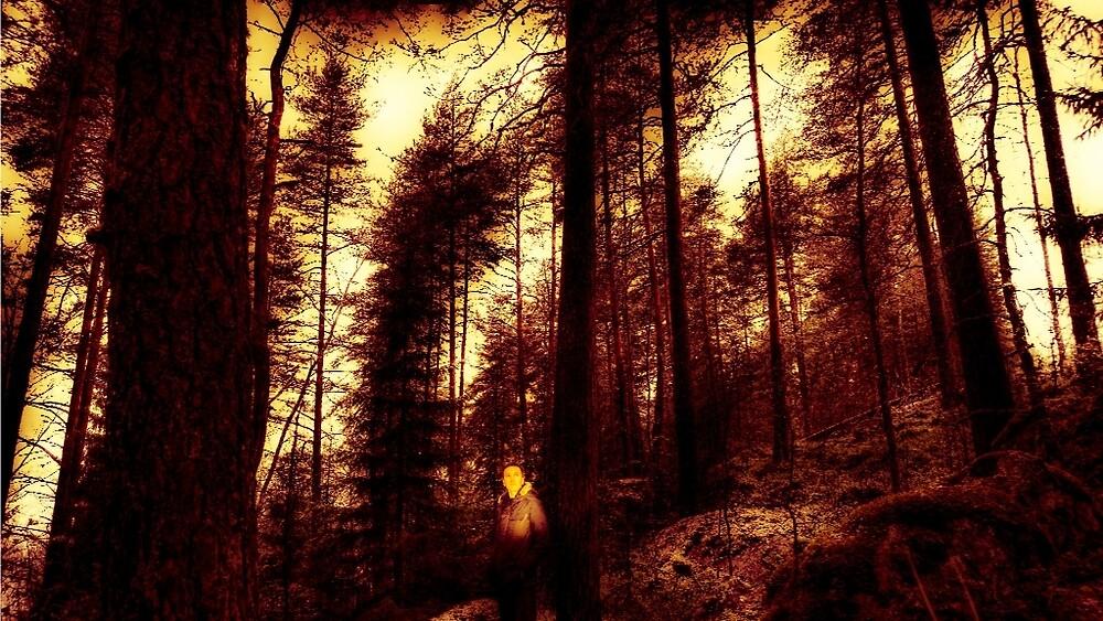 Twilight People III by Mikko  Suhonen