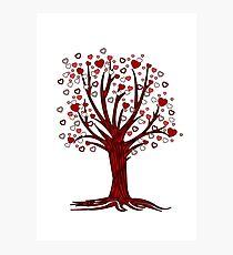 Heart Tree (2) Photographic Print
